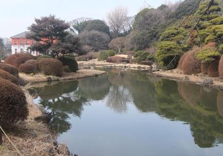 20110218_koishikawa_syokubutsuen_n