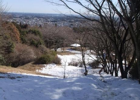 20110224_nagame_1