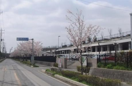 20110416_skypark