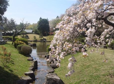 20110421_japanese_garden_4