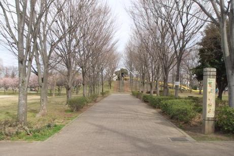 20110520_seki_park