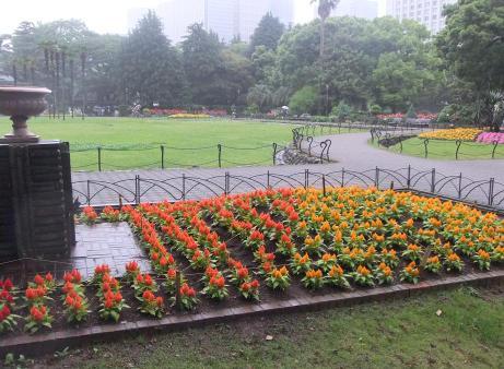 20110530_flower