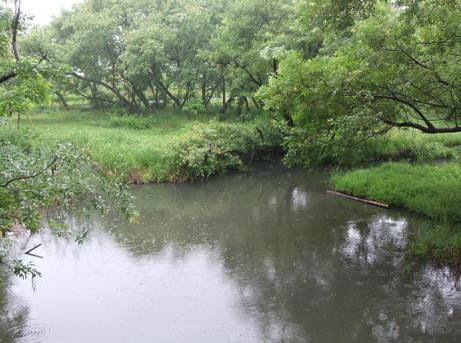 20110604_lake
