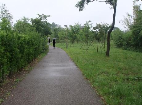 20110604_yuhodou4