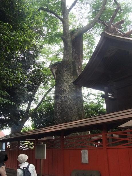 20110618_ookeyaki