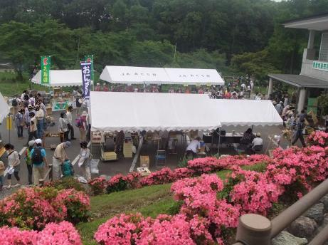 20110618_maruyama_park1