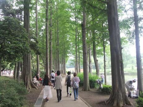 20110618_maruyama_park3