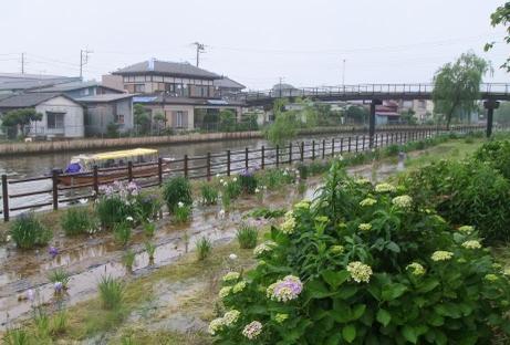 20110627_maekawa_2