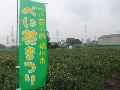 20110628_benibana_batake1