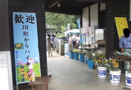 20110704_benibana_furusatokan2