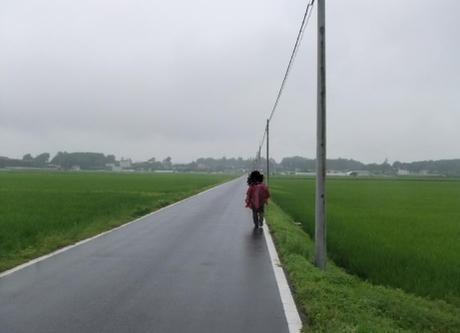 20110715_road03
