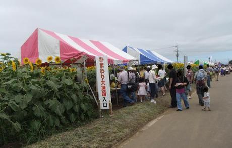 20110725_daimeiro1