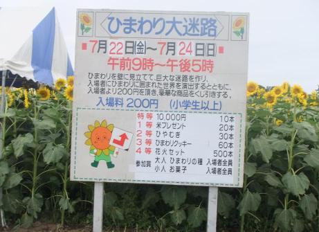 20110725_daimeiro4