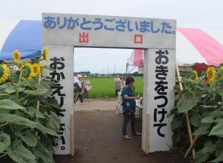 20110725_daimeiro5