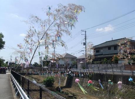 20110801_tanabata2