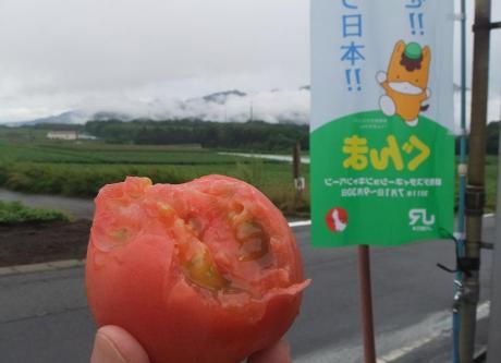 20110827_tomato3