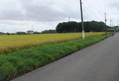 20110921_furusatonomori1