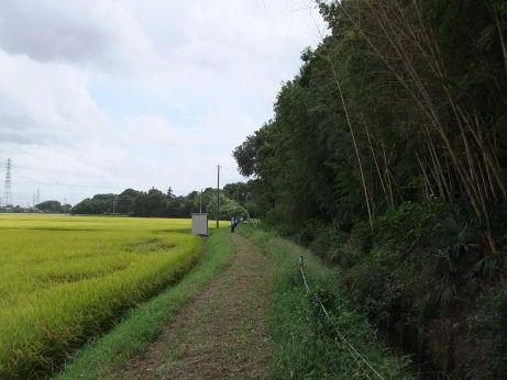 20110921_furusatonomori2
