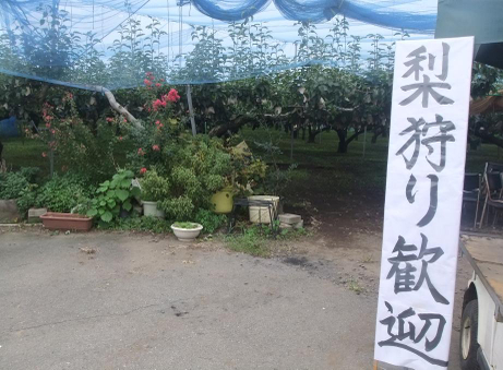 20110928_nashigari