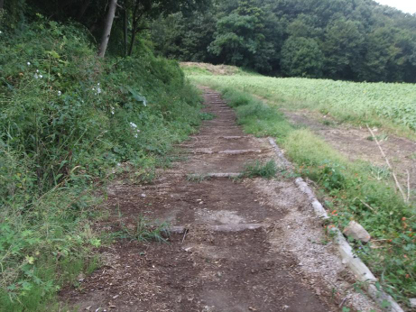 20111013_foot_path1