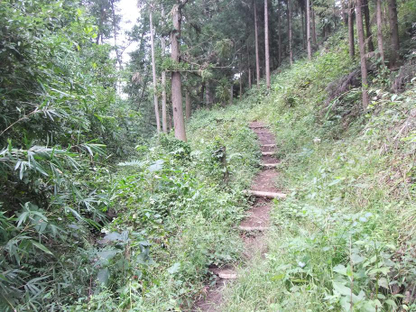 20111013_foot_path2