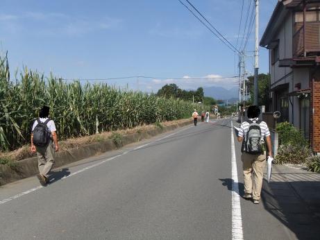 20111016_toumorokoshi_batake