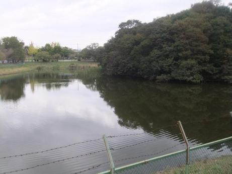 20111022_kansatsuen