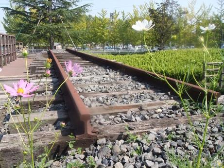 20111026_rail1
