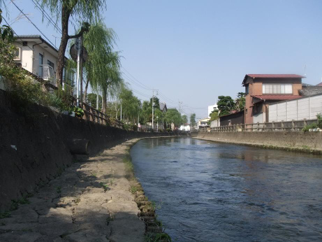 20111027_uzumzgawa1