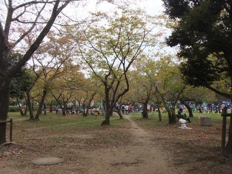 20111104_waseda_park