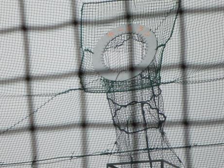 20111115_batting4