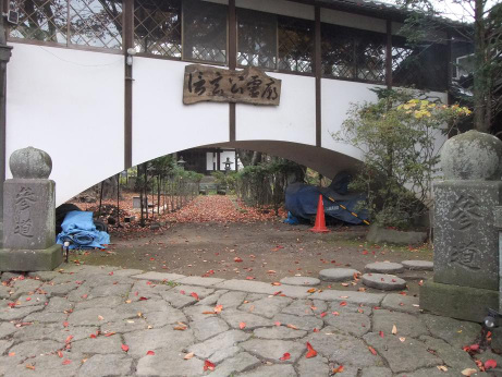 20111121_ryuunji4