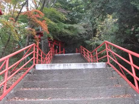 20111122_hanazura2