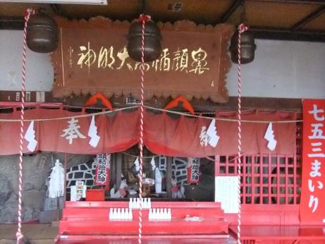 20111122_hanazura5