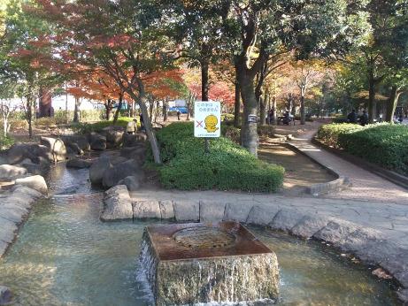 20111127_park