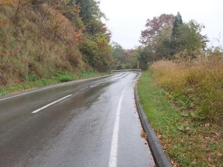 20111202_road5