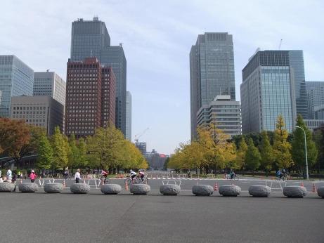 20111203_gyoen3