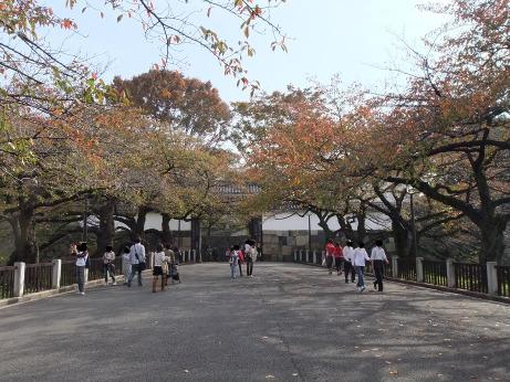 20111204_tayasumon2