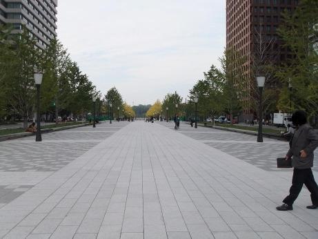 20111205_icyou_dori