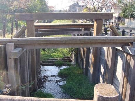 20111213_minuma_tsusenbori3