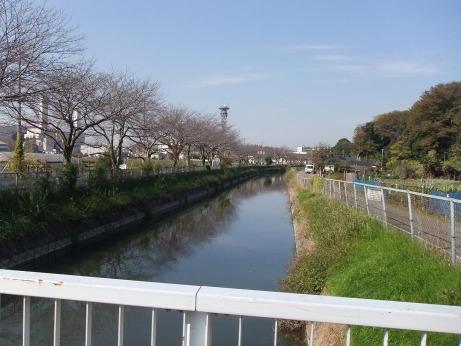 20111217_river