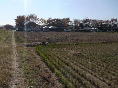 20111219_azemichi