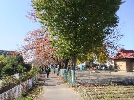20111220_road1