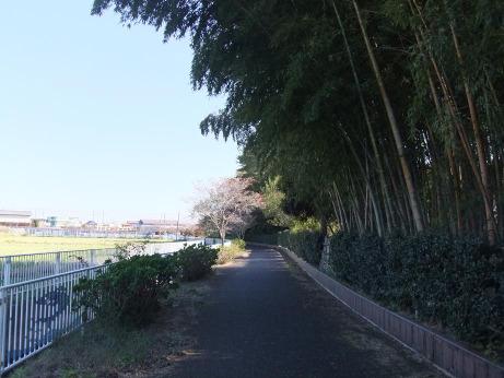 20111220_road2