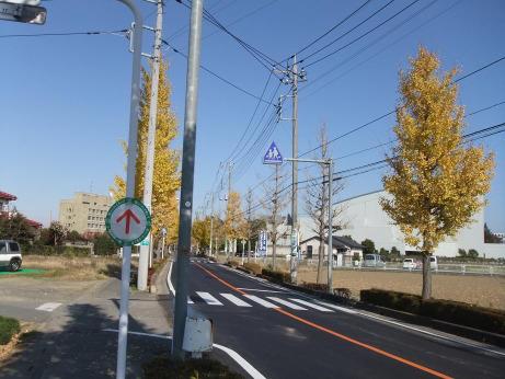 20111223_road2