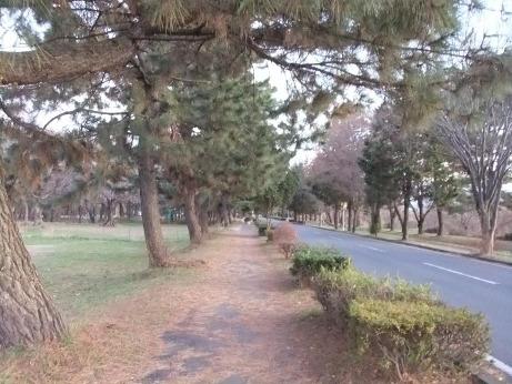 20111224_road
