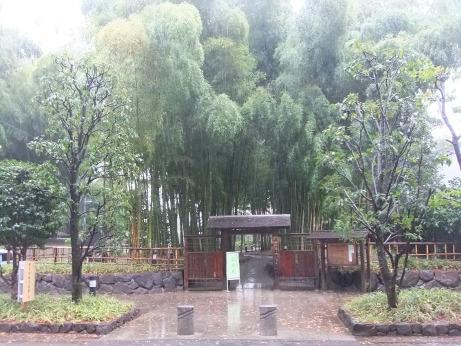 20111225_chikurin