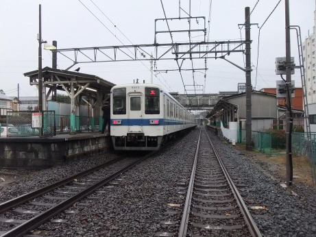 20111230_oomiya_park_st
