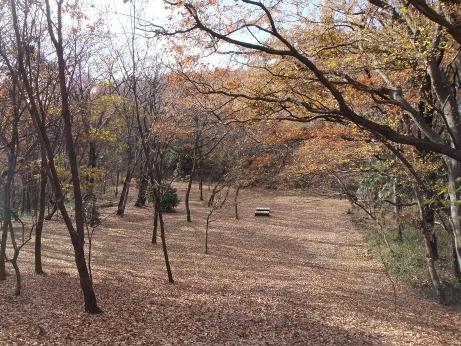 20120110_hokkorihiroba