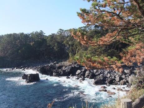 20120127_jyougasaki4